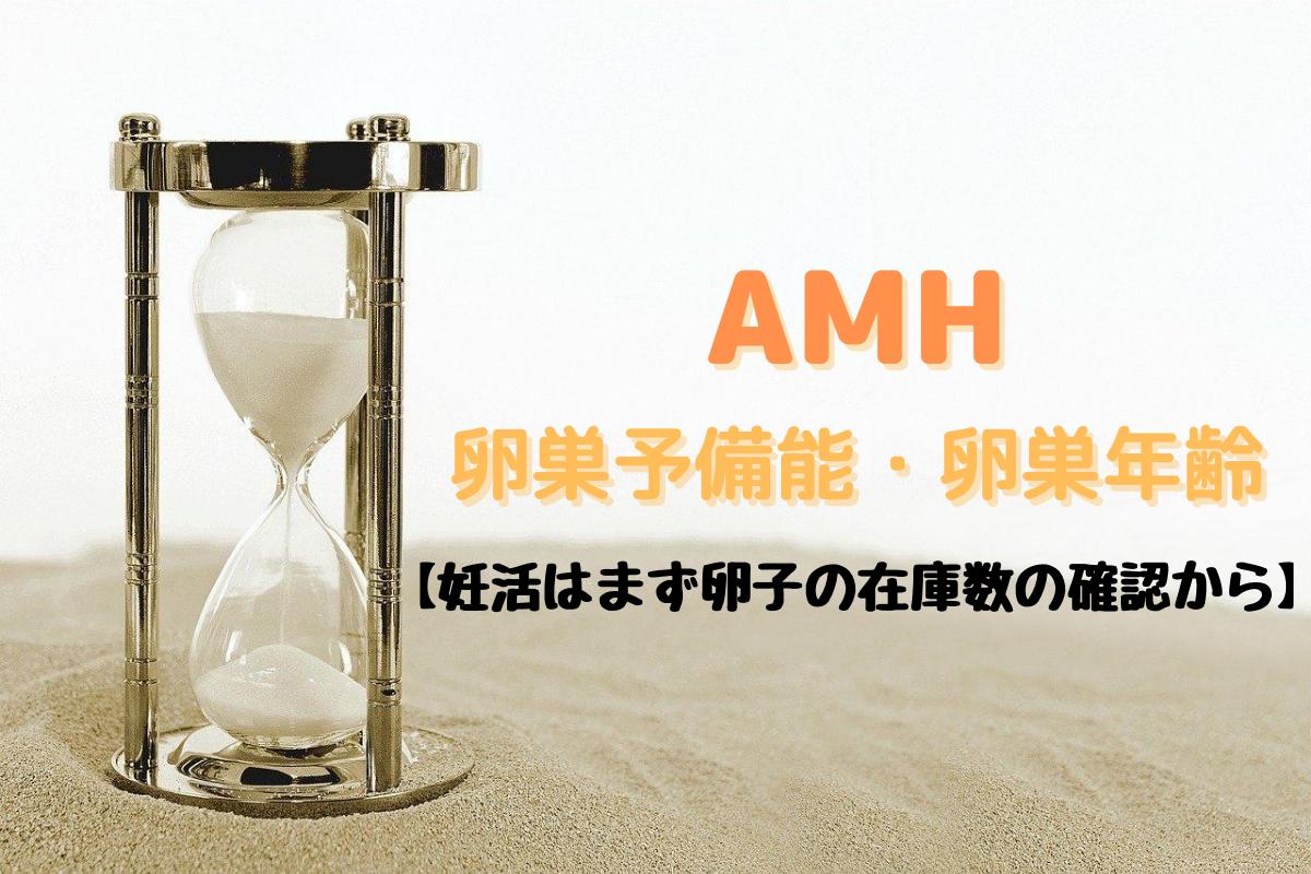 AMHと 卵巣予備能・卵巣年齢のアイキャッチ