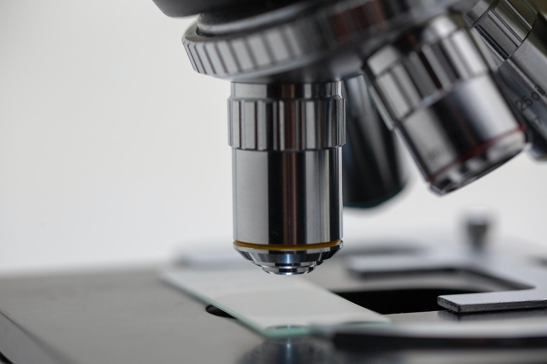 顕微鏡で何かをのぞいている