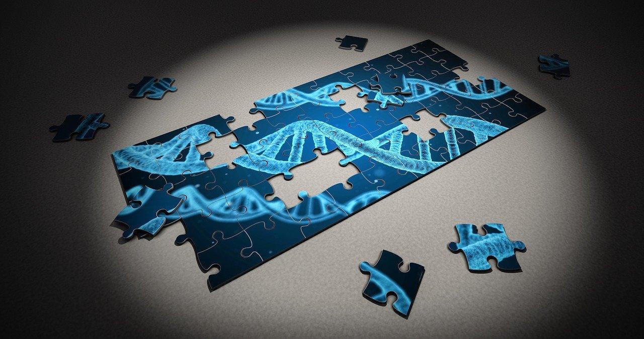 遺伝子欠損